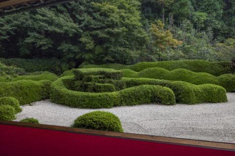 大池寺 皐月刈込庭園
